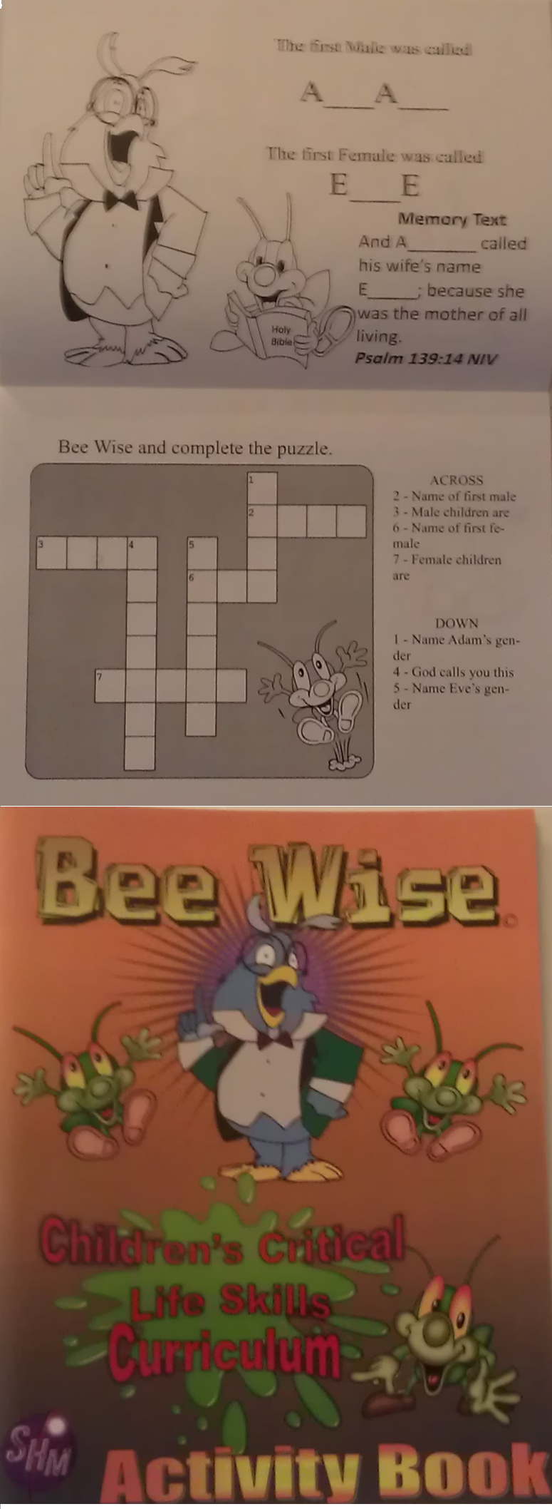 Bee Wise Children's Activity Book